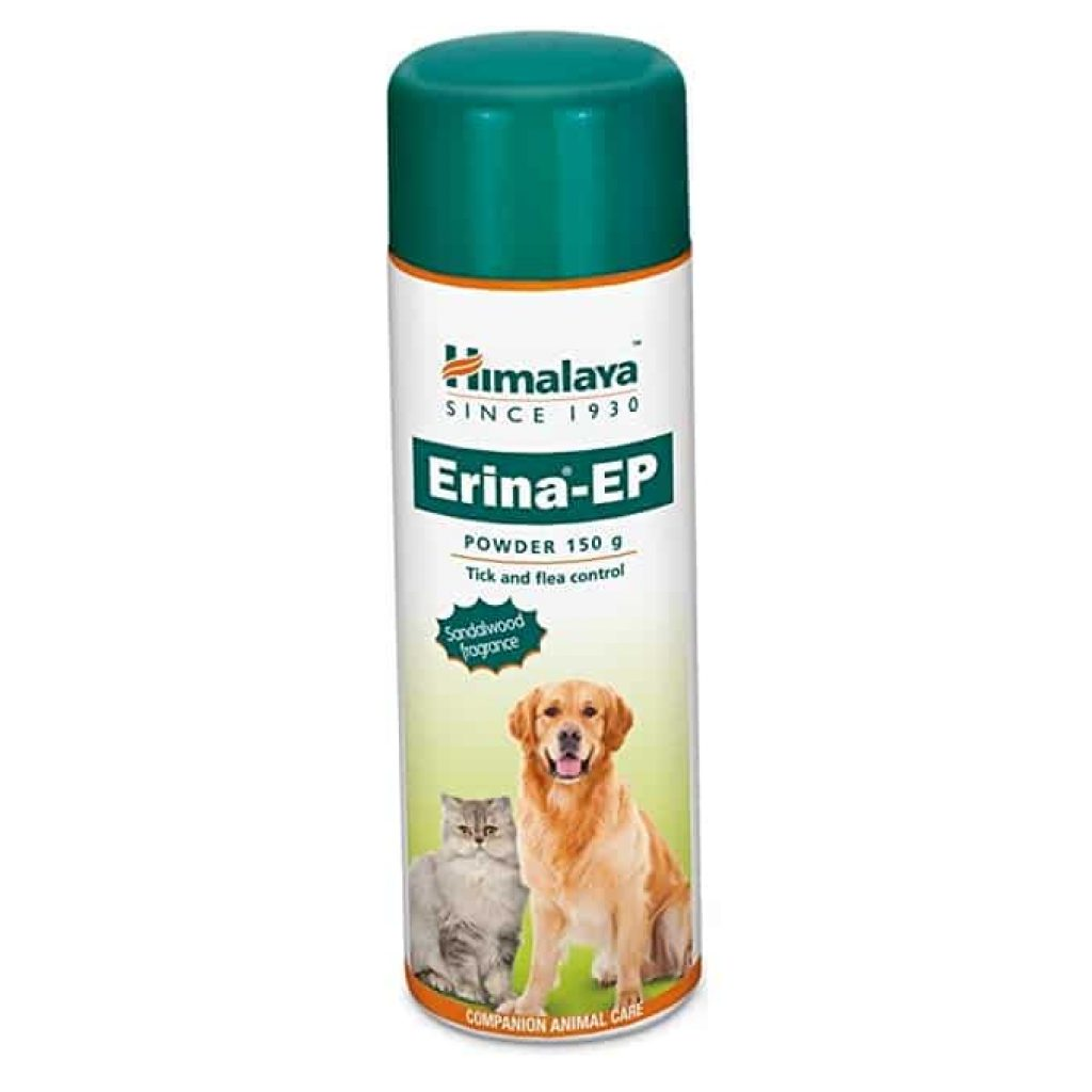 How to protect your dog from Tick and flea powder