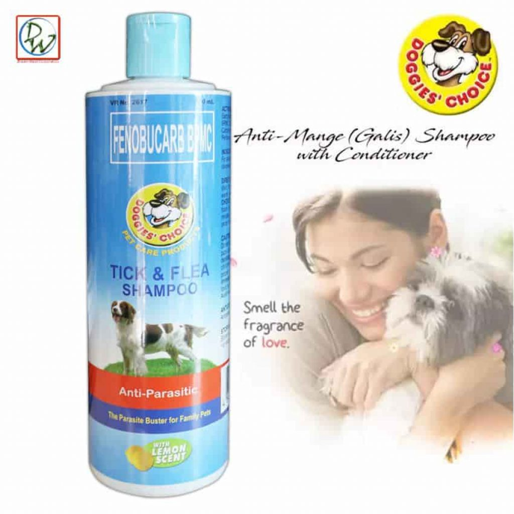 How to protect your dog from Tick and flea shampoo