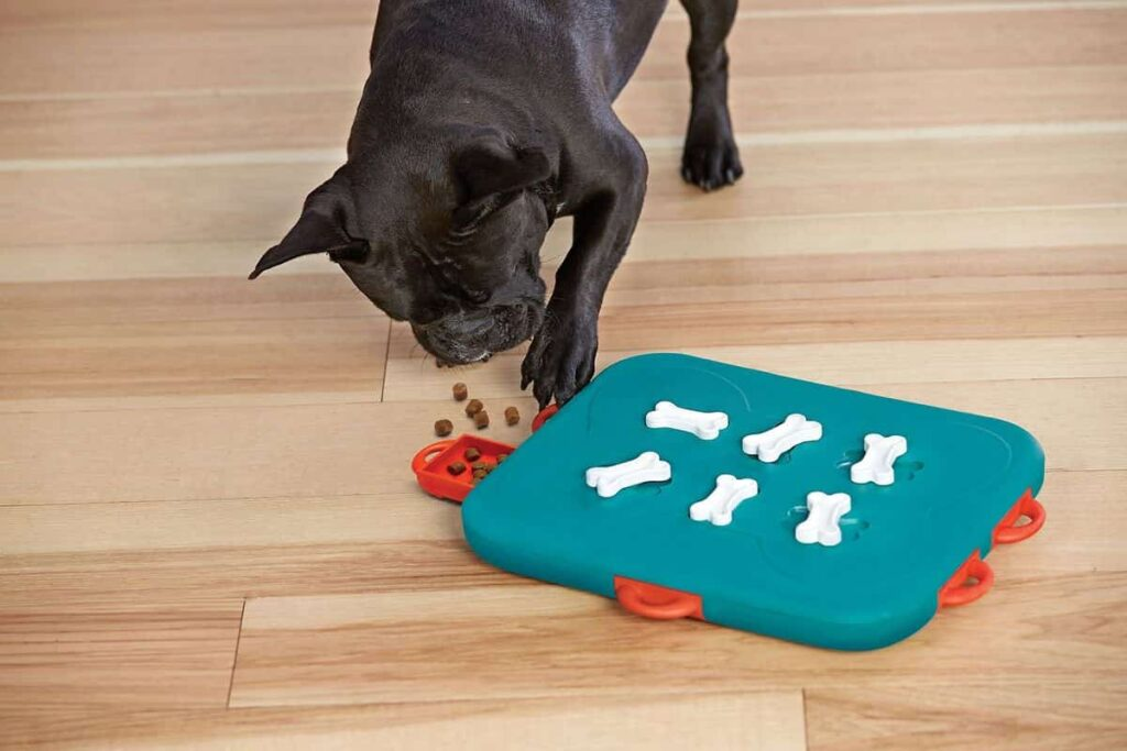 Dog Food Puzzle Game