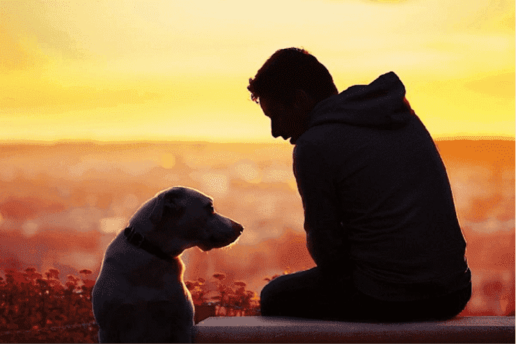 The bond with a true dog is as lasting as the ties of this earth will ever be