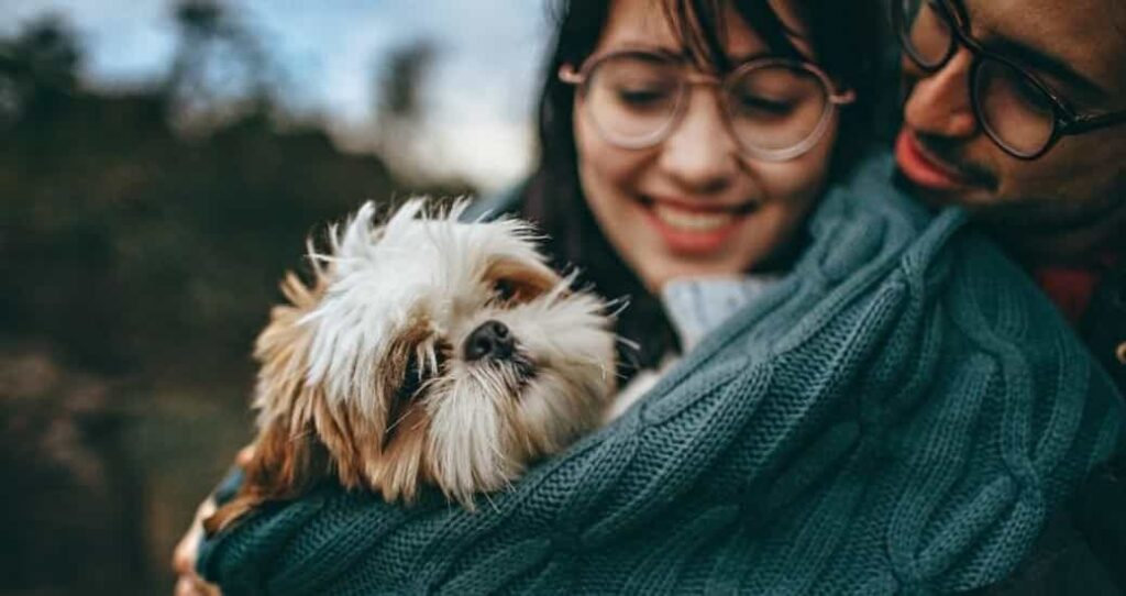 How dogs Promote your health and Joy