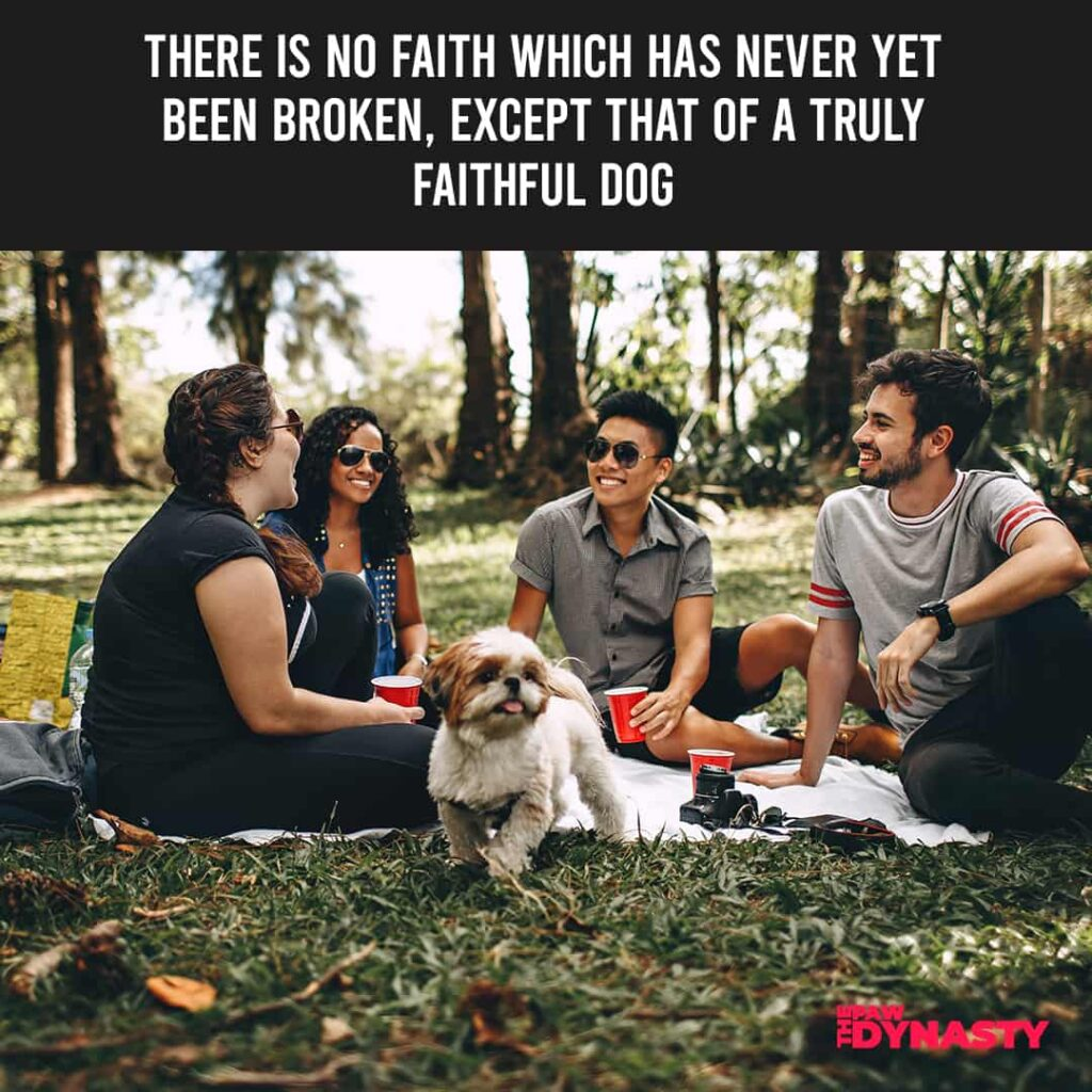 There is no faith which has never yet been broken, except that of a truly faithful dog