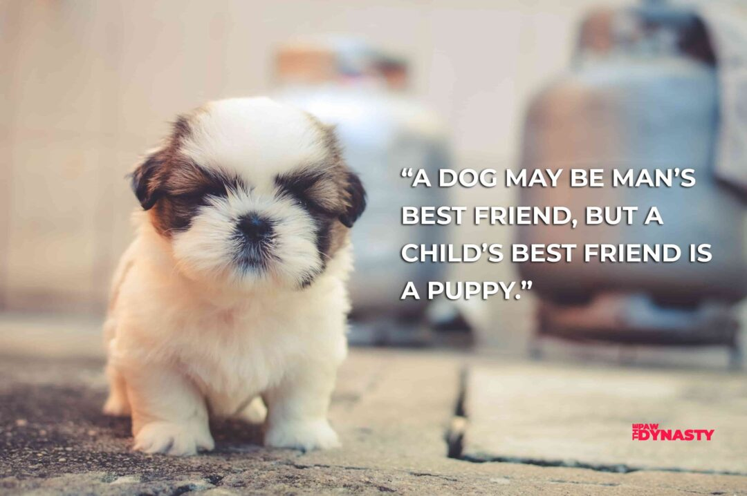 """""""A dog may be man's best friend, but a child's best friend is a puppy."""""""