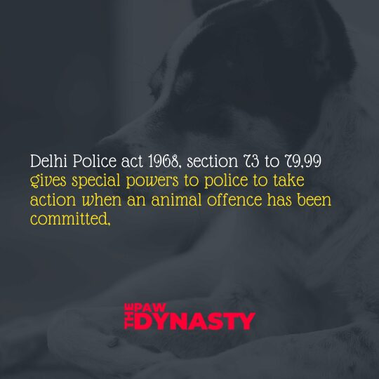 Animal Protection Laws Delhi Police Act 1968