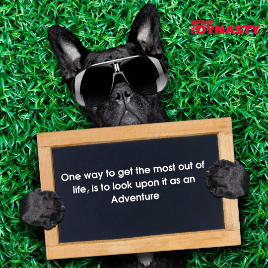 One way to get the most out of life, is to look upon it as an Adventure