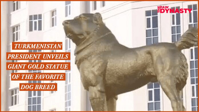 Turkmenistan President unveils giant Gold statue of the Favorite dog breed