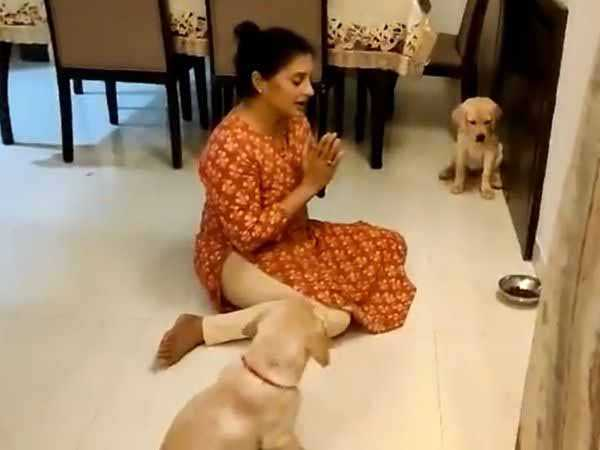 Woman teaches dogs to pray before eating, video goes viral